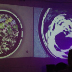 photo of the two cymatics projections